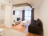Furnished Rentals Paris Avenue de Clichy